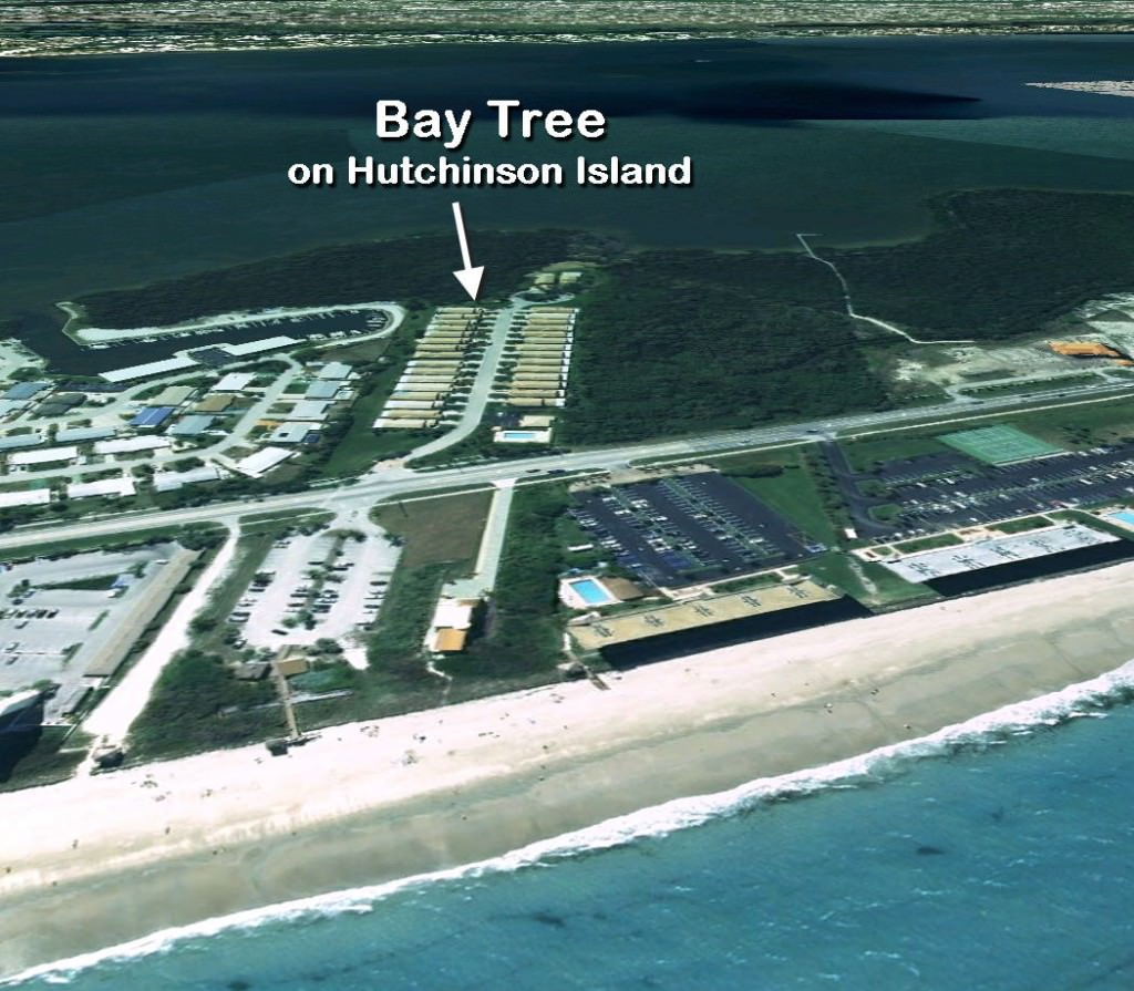 Bay Tree on Hutchinson Island in Jensen Beach, Florida