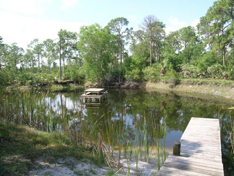 Homes and Land for Sale in Palm City, Farms