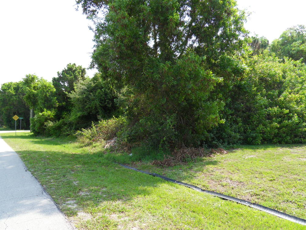 Oversized Buildable Lot in Port St Lucie New Price