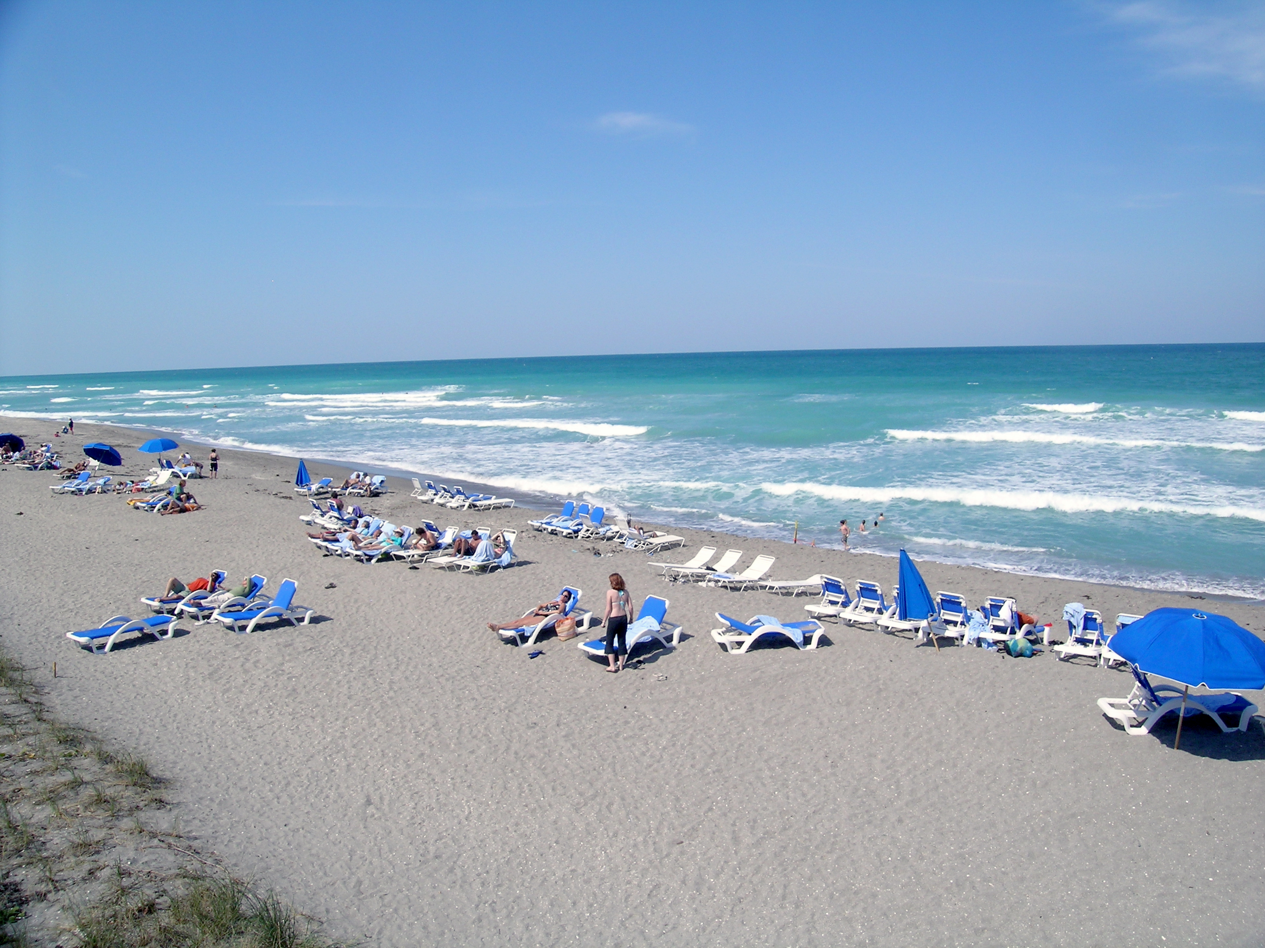 Real Estate For Sale On Dog Friendly Beach Fl