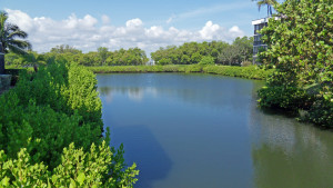 Green Turtle Cove Condo Hutchinson Island FL