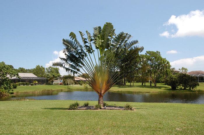 Coral Lakes real estate in Stuart FL